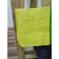 Крафт пакет желтый с кручеными ручками 250*320*110 мм